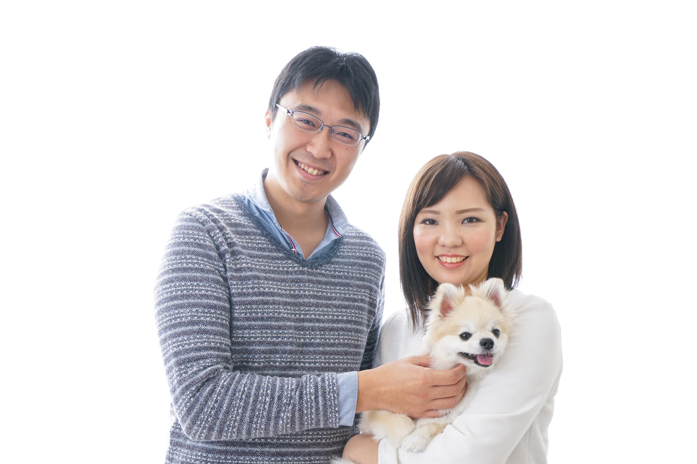 Animal welfare fostering dogs